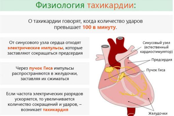 Как снизить пульс при гипертонии