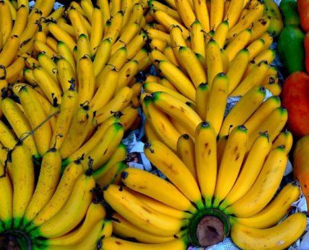 Изображение - Бананы повышают давление Ris.2-Zolotyie-plodyi-450x364